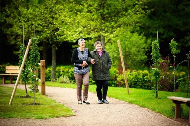 Burn out : Quand les jardins thérapeutiques apaisent aussi les professionnels de santé