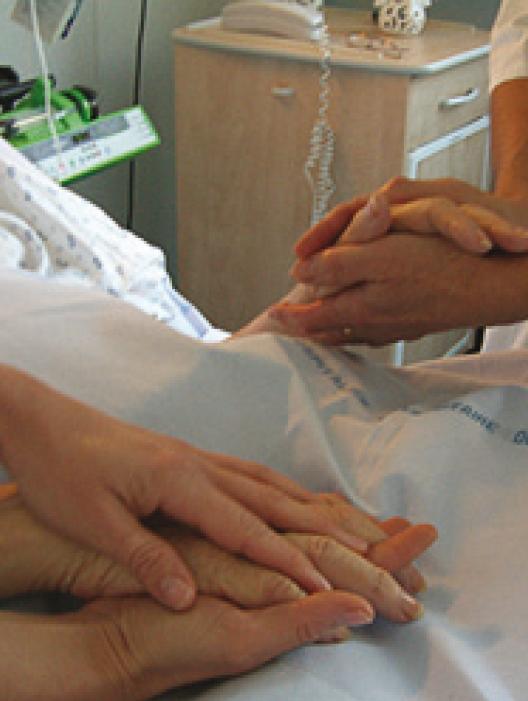 Projet d'expérimentation de soins palliatifs en EHPAD aux Soleillades