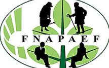 Pour la FNAPAEF, « le plan EHPAD présenté par Madame Buzyn ne répond pas aux besoins urgents »